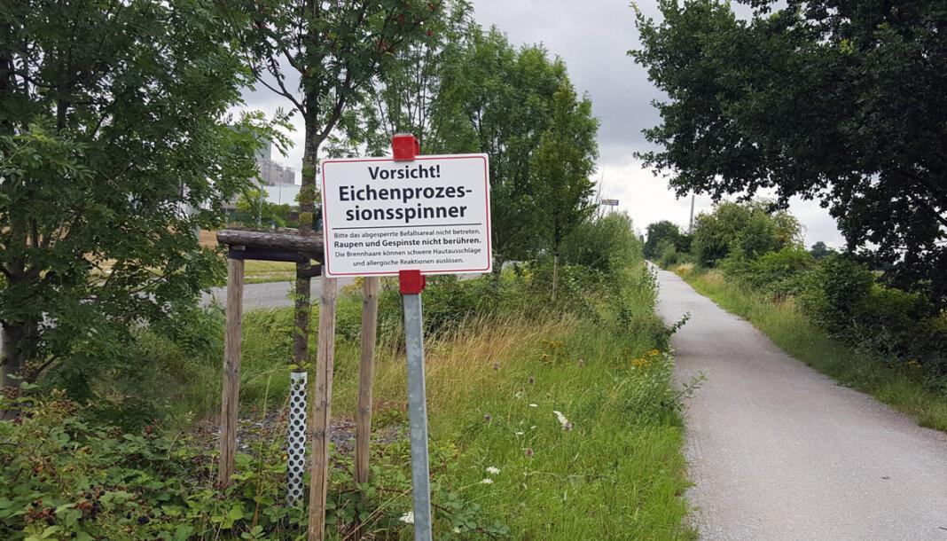 In Werne wird unter anderem auf der Zechentrasse in Höhe der Straße Brede vor der Raupe gewarnt. Foto: Wagner