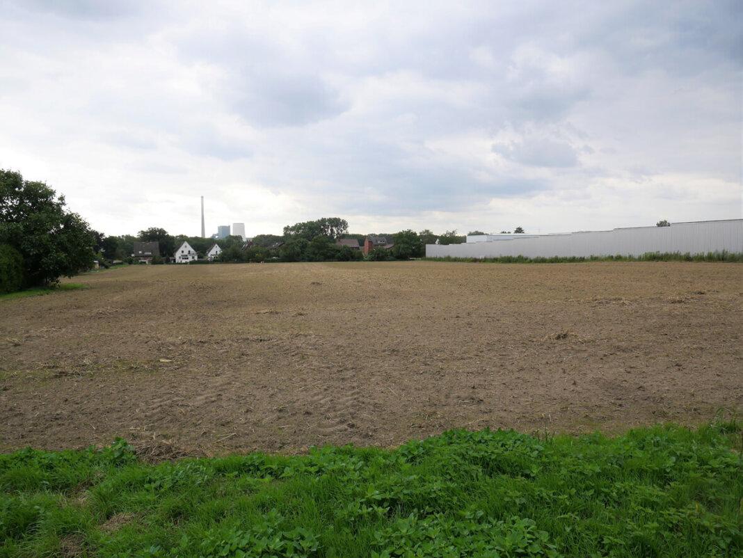 Auf einer Fläche von rund 2,3 Hektar zwischen den Straßen Baaken im Norden und Bellingheide im Süden will ein Investor neben Einzel- und Doppelhäusern auch Reihen- und Mehrfamilienhäuser mit öffentlich gefördertem Wohnraum errichten. Foto: Gaby Brüggemann