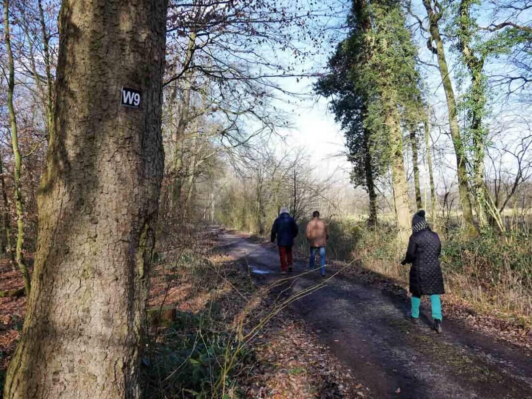 Auch der Wanderweg W9 ist gut besucht. Foto: Gaby Brüggemann