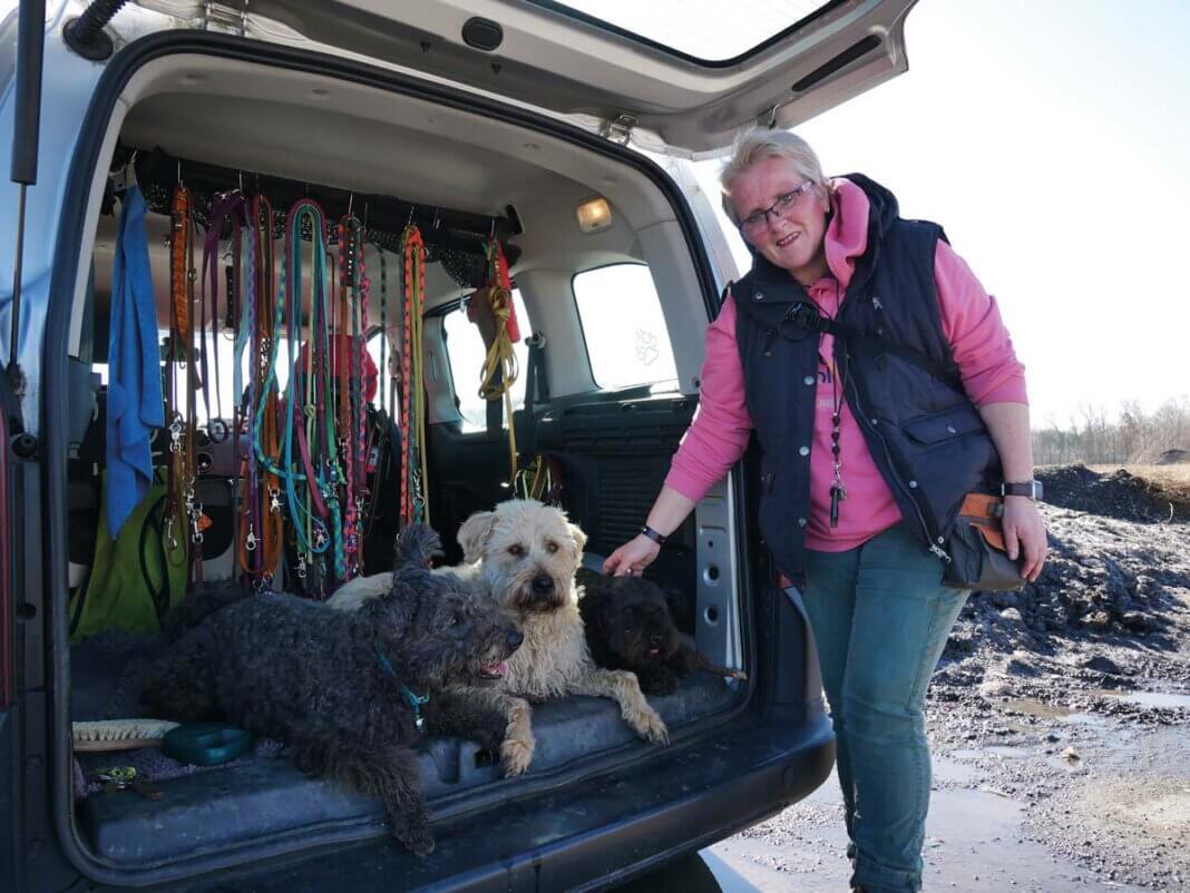 Kurzes Verschnaufen nach dem Rundgang, dann möchten die Vierbeiner am liebsten gleich wieder los. Ina Katrin Sticken mit Elroy, Gassi-Hund Kröte und Donatello. Foto: Gaby Brüggemann