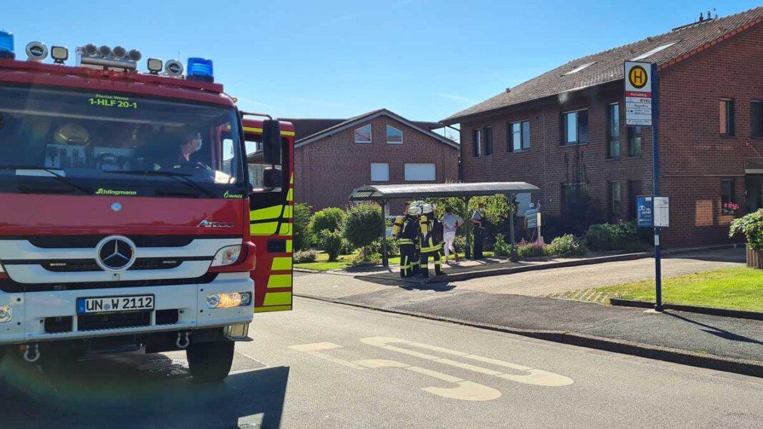 An der Butenlandwehr fing ein Baum Feuer, weil zuvor ein Anwohner Unkraut wegflämmen wollte. Foto: Feuerwehr Werne