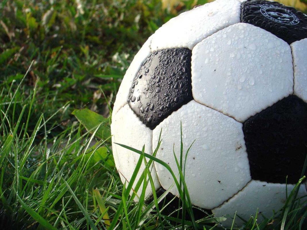 Sieben Spiele sind bei der Fußball-Europameisterschaft bereits ausgetragen worden. Beim Tippspiel von WERNEplus gibt es einen alleinigen Führenden. Symbolfoto: pixabay
