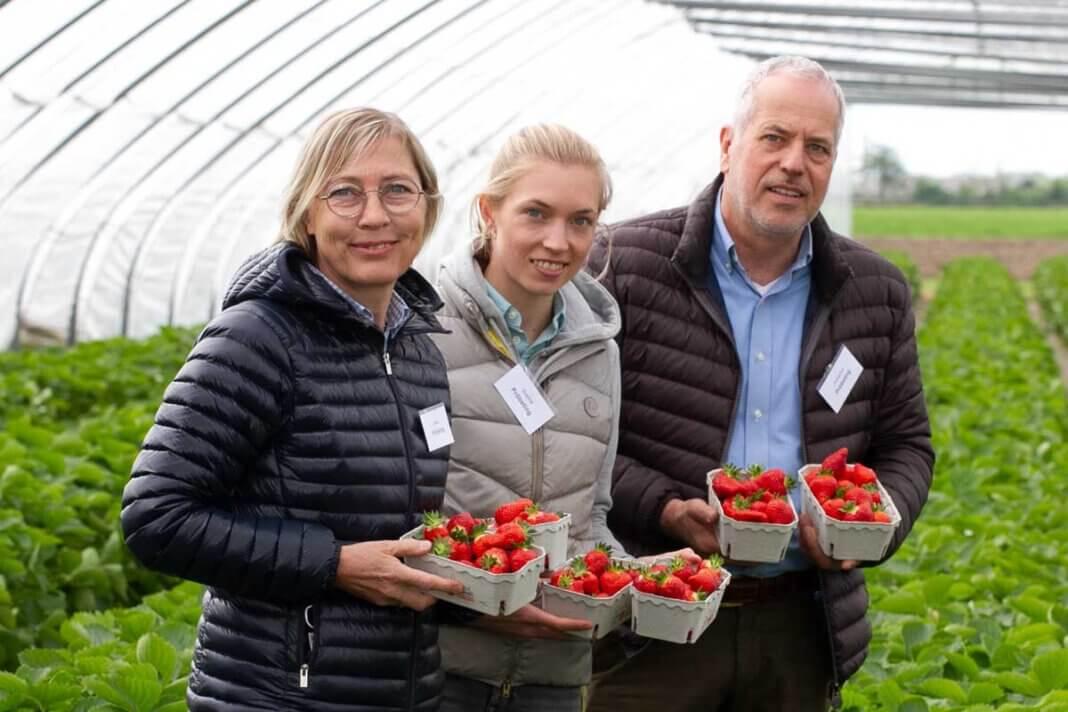 Anne, Sophia und Hubertus Pröbsting hofften auf besseres Wetter, damit die Erdbeerernte so richtig Fahrt aufnehmen kann. Sie wurden erhört. Foto: Isabel Schütte