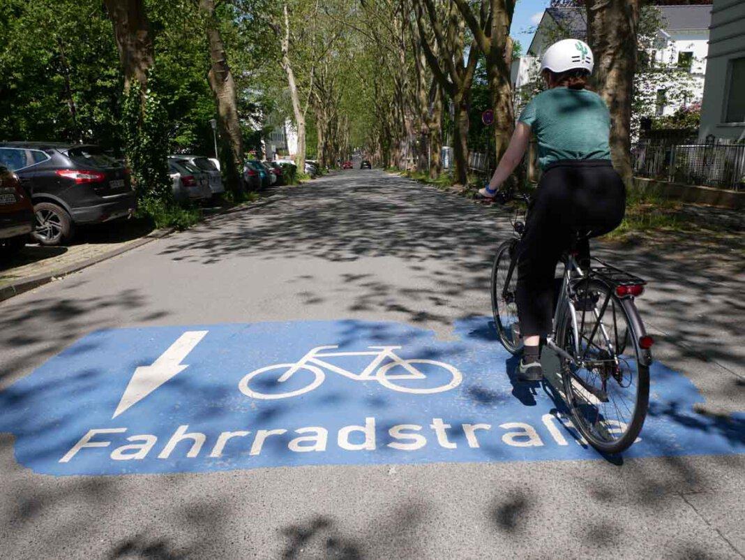 Die Platanenallee in Unna ist eine Fahrradstraße. Foto: Birgit Kalle – Kreis Unna