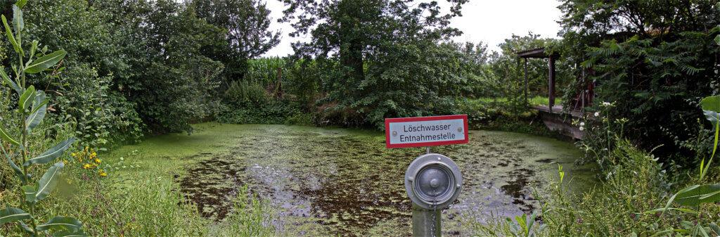 Der eigentliche Ursprung der Horne liegt in diesem idyllischen Löschteich auf dem Mayknapp bei Herbern. Foto: Steinmüller